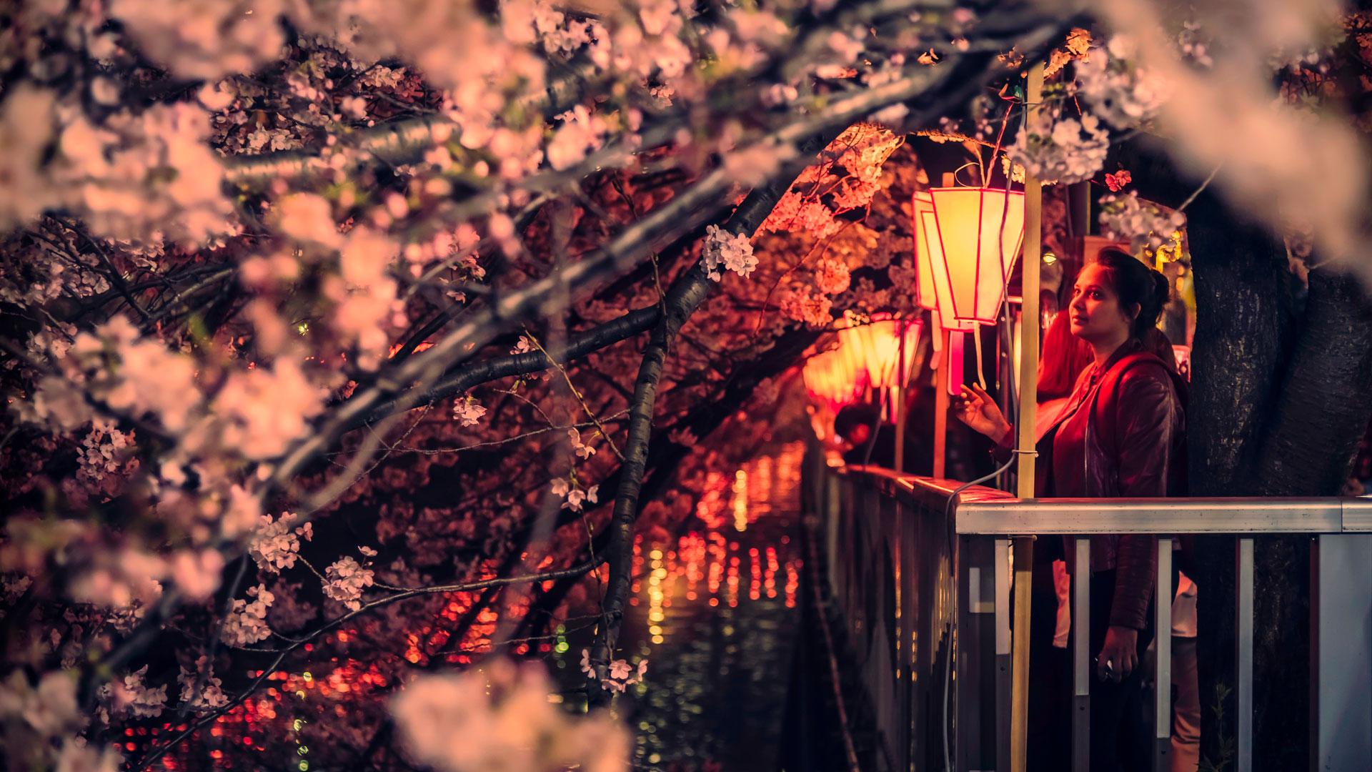 Ciudad Lexus Tokio Las luces de la ciudad