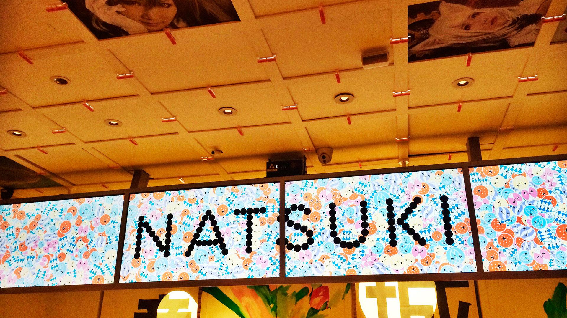 Natsuki hero asset
