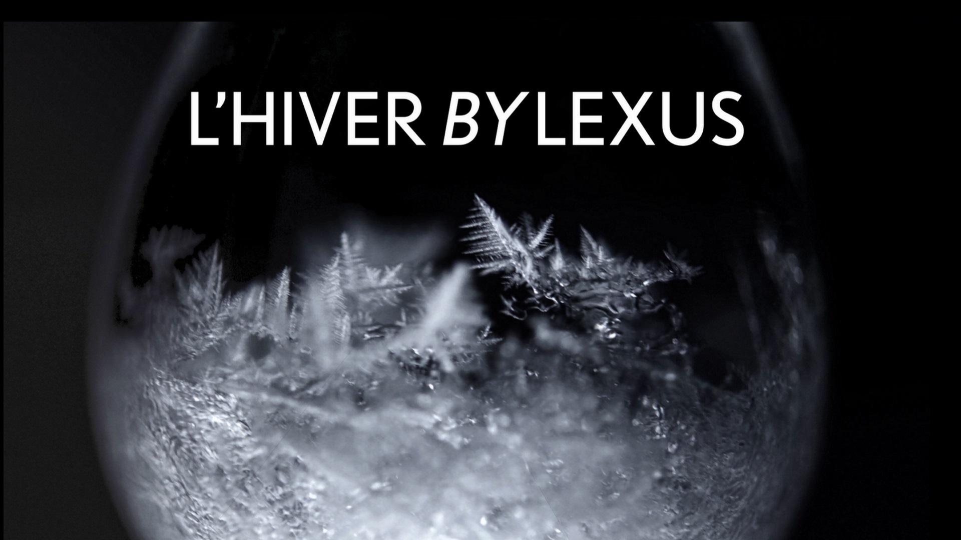 2017 lexus winter accessories video is
