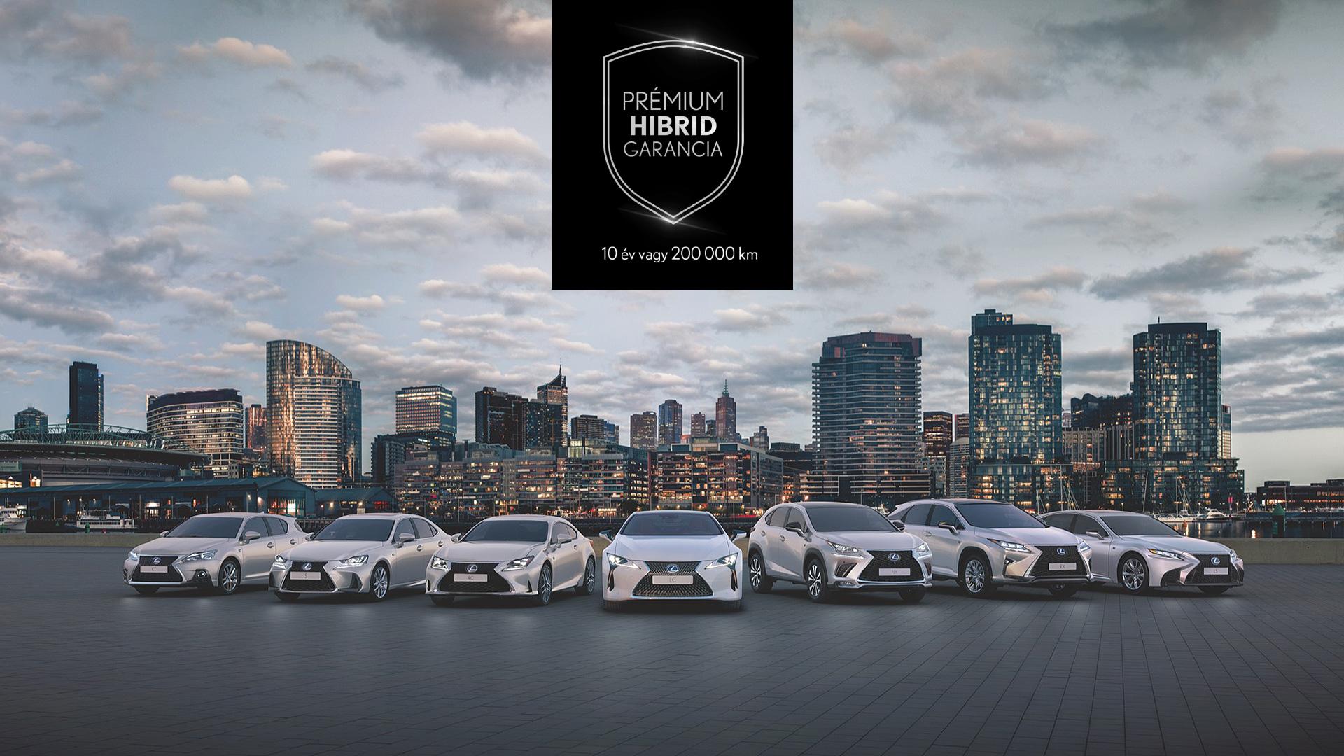 Premium Hybrid Image