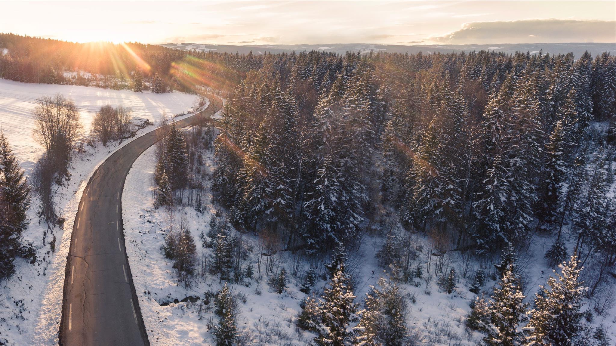 background winter campaign faq