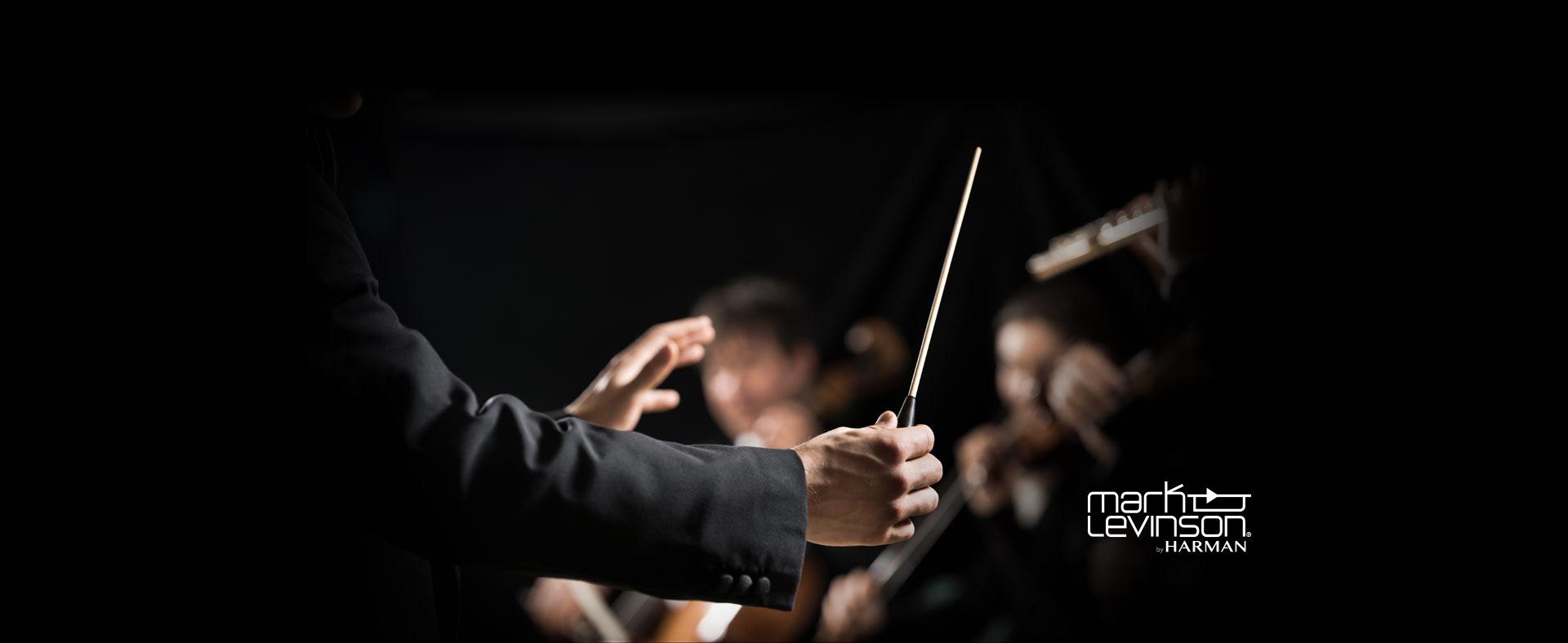 symphony orchestra 1920 Hero image